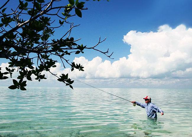 https://www.cozumelgetaways.com/wp-content/uploads/2019/06/permit-fish-cozumel.jpg