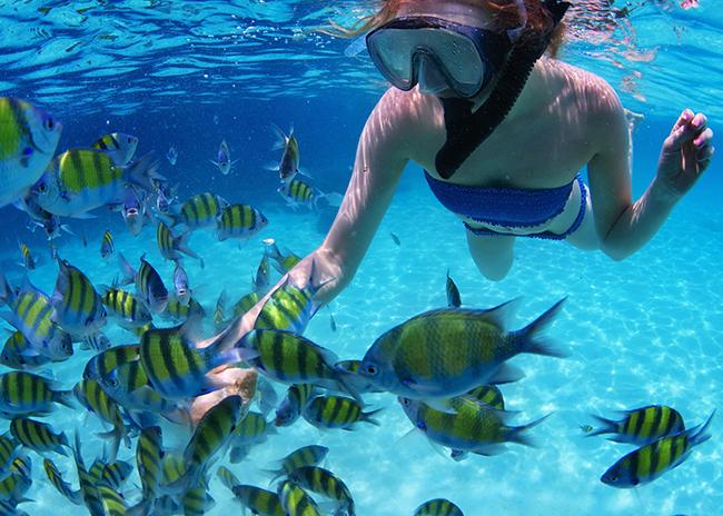 https://www.cozumelgetaways.com/wp-content/uploads/2019/06/villa-blanca-reef-at-cozumel.jpg